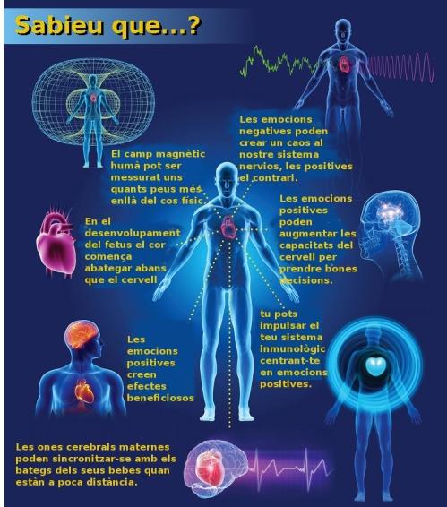 coherencia del cor